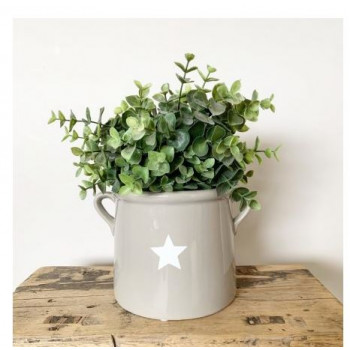 Grey Pot with White Star (15cm)